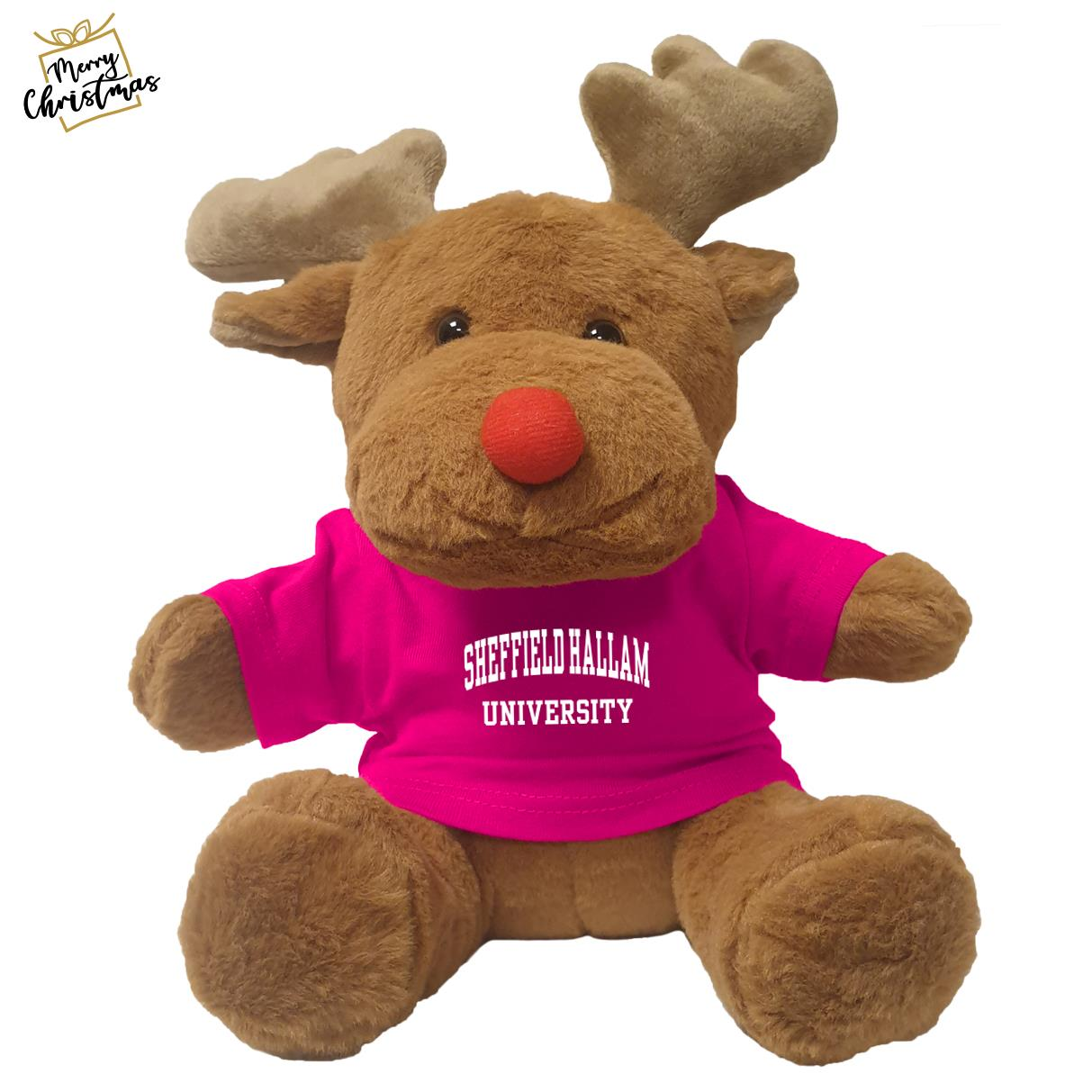 Reindeer Bear With T-Shirt